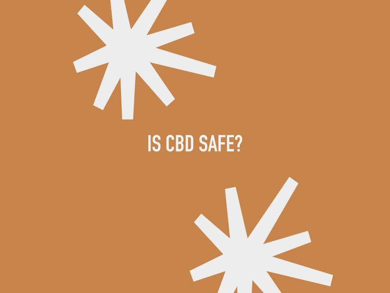 Is CBD safe (and who says it is)?